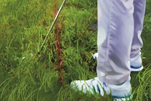 Losse natuurlijke voorwerpen of de grond in een hindernis raken